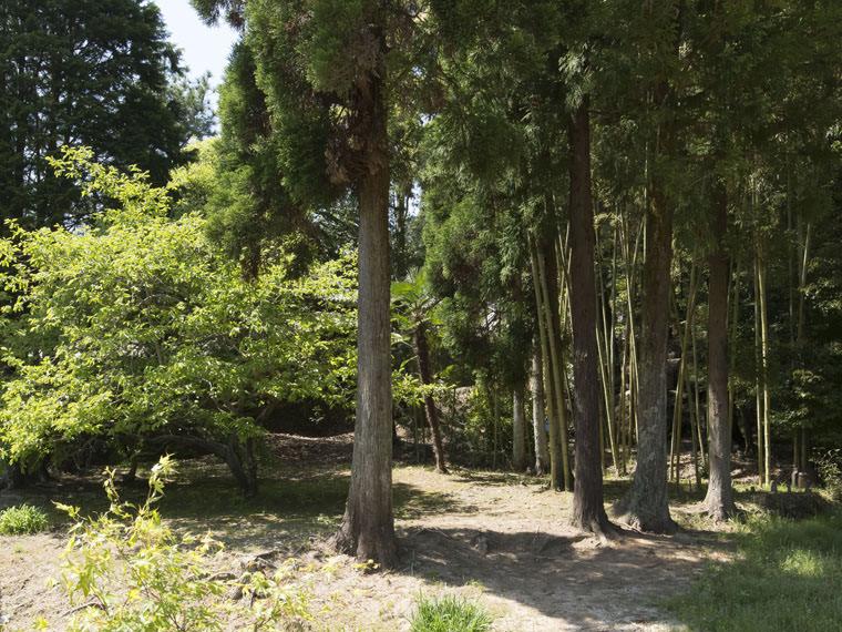 満願寺・里山のイメージ4